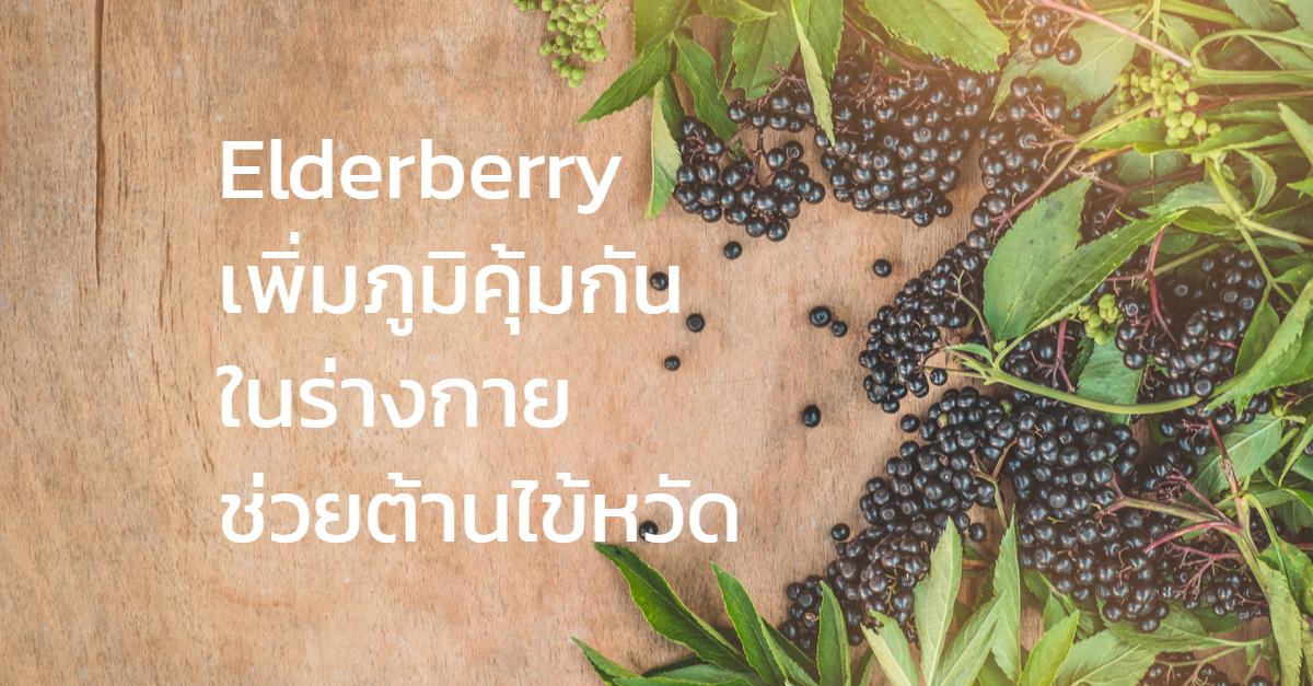 Elderberryเพิ่มภูมิคุ้มกันในร่างกายช่วยต้านไข้หวัด